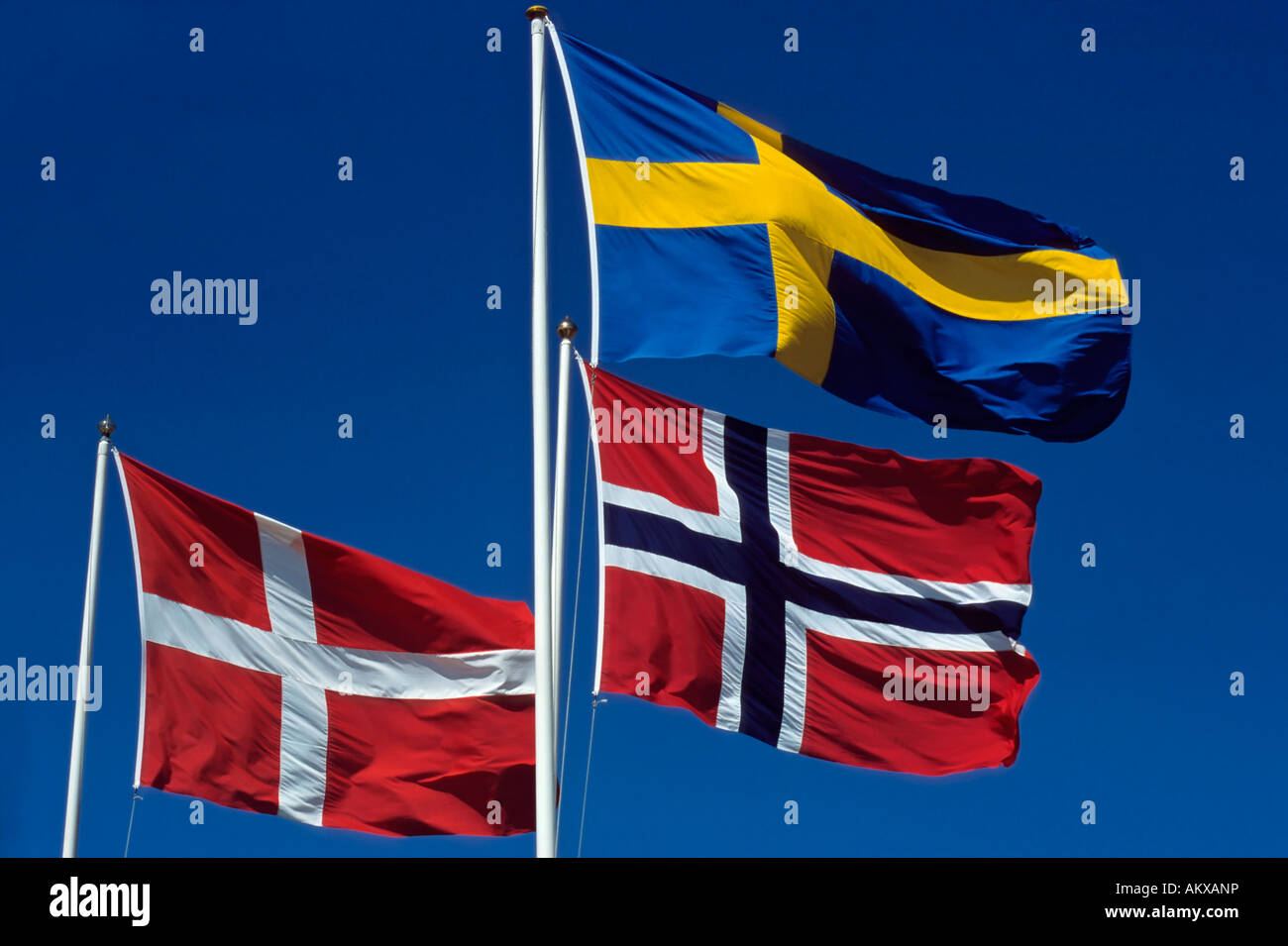 Scandinavian flags - Stock Image
