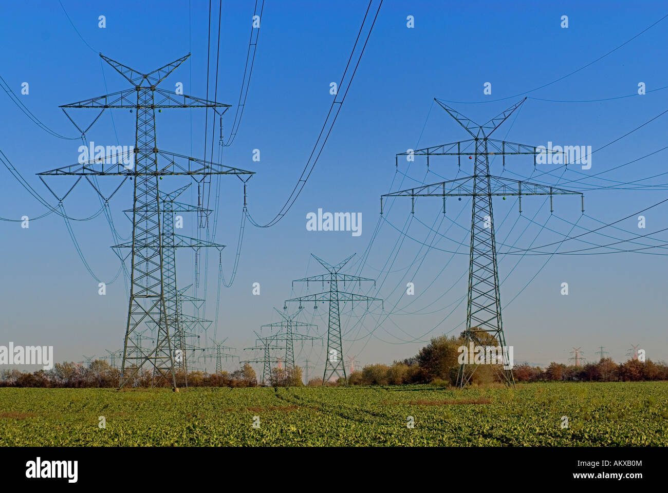 High-voltage power lines in a rural landscape in Northern Germany - Stock Image