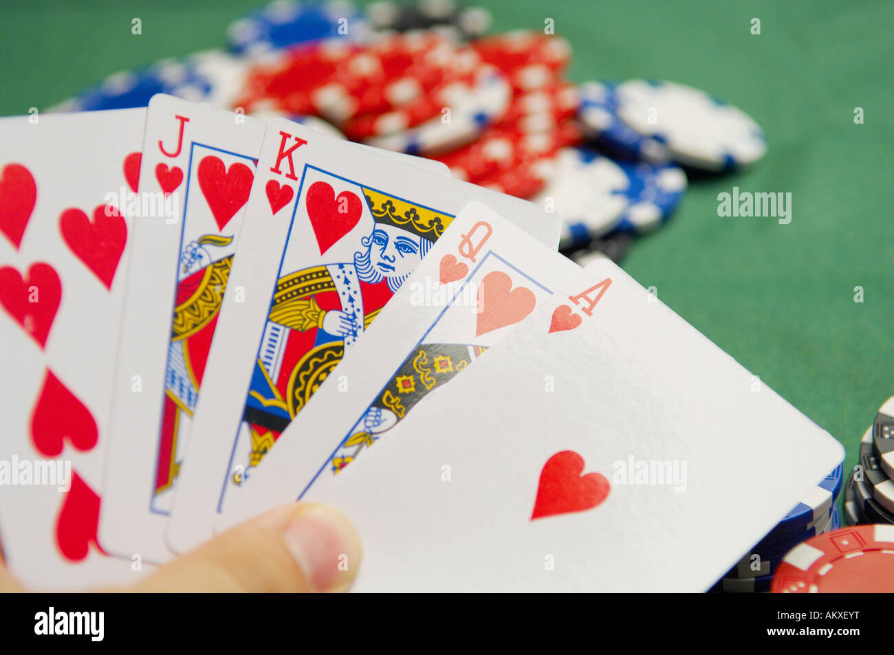 A Poker Player holds his cards, Royal Flush - Stock Image
