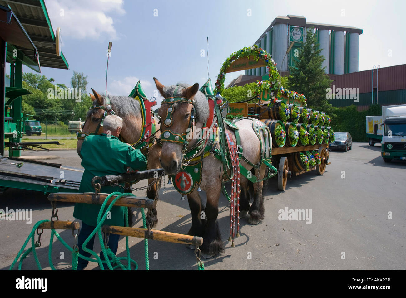 Brewery horse of the Licher brewery, Lich, Germany. - Stock Image