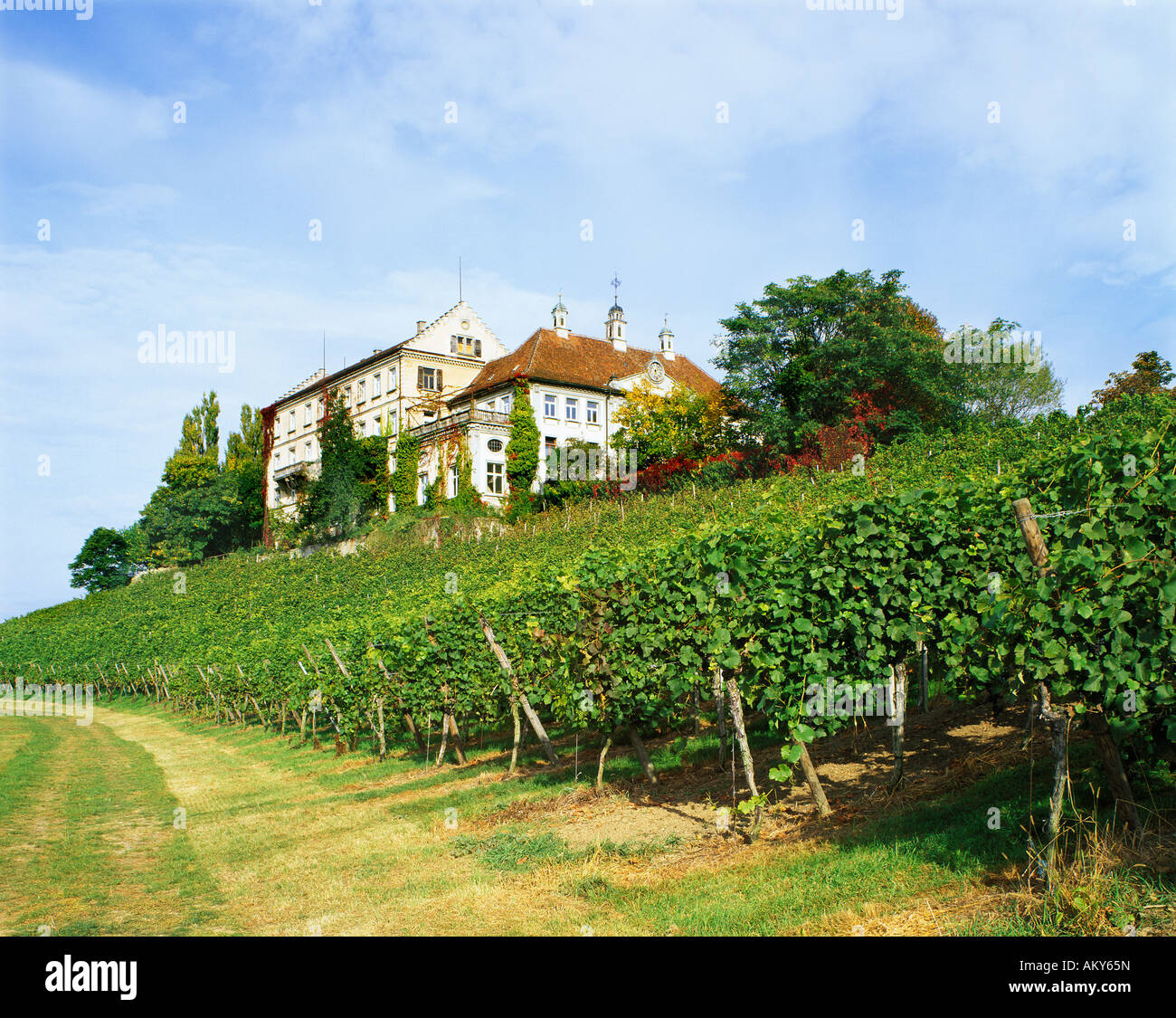 Kirchberg castle upon the Lake Constance Baden-Wuerttemberg Germany Stock Photo