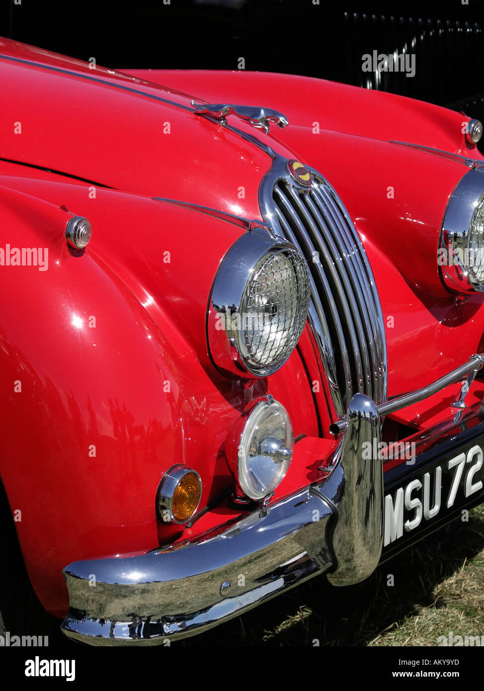 Front bonnet grill and headlights of a classic Jaguar XK 140 in bright red with jaguar hood ornament - Stock Image