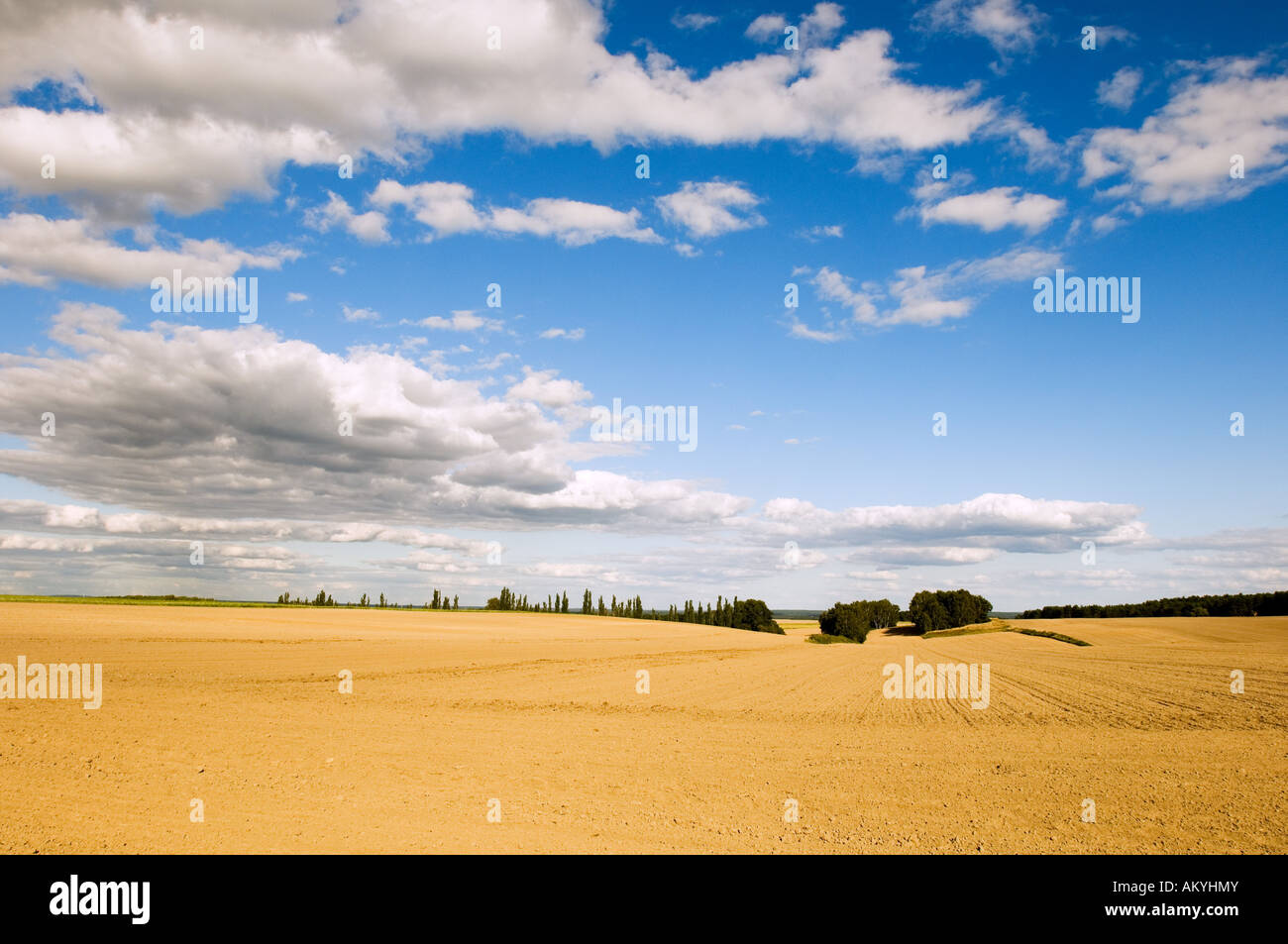 Sky, clouds and sand, plowed field in the late summer in the Flaeming, Germany - Stock Image