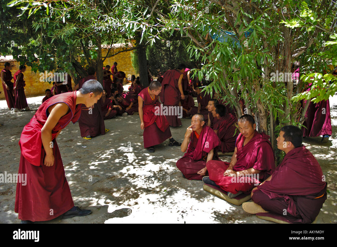 The famous discussin monks at the Ganden convent (4300m) near Lhasa, Tibet Stock Photo