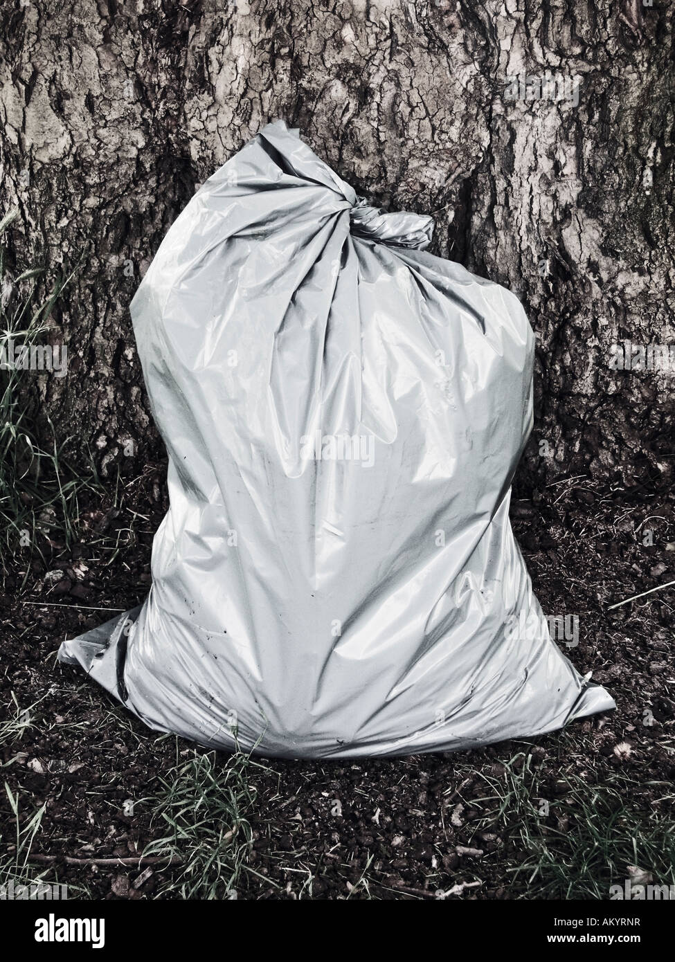 One Full Grey Plastic Bag Standing In Front Of Tree - Stock Image