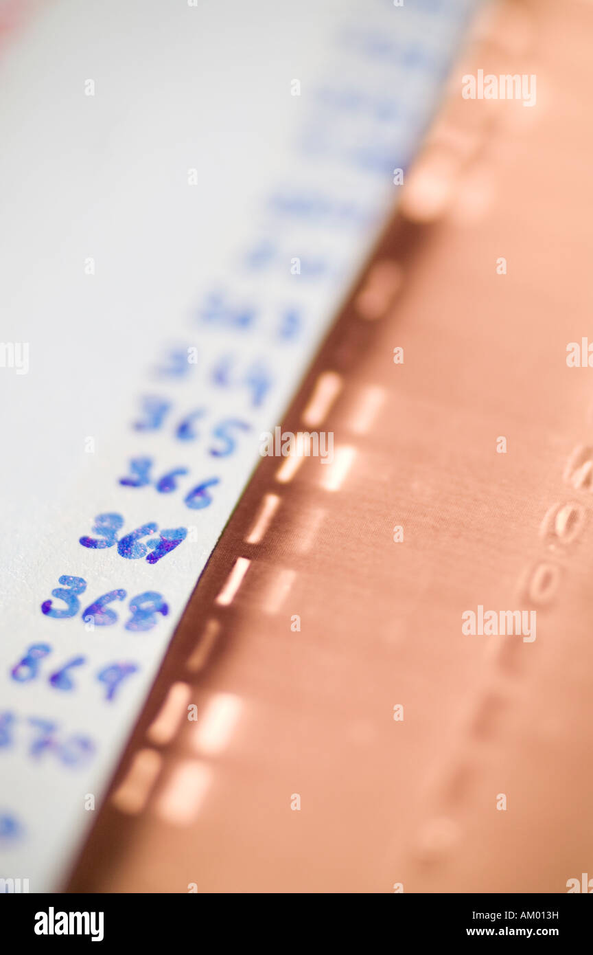 Agarose gel results of a mouse genotype - Stock Image