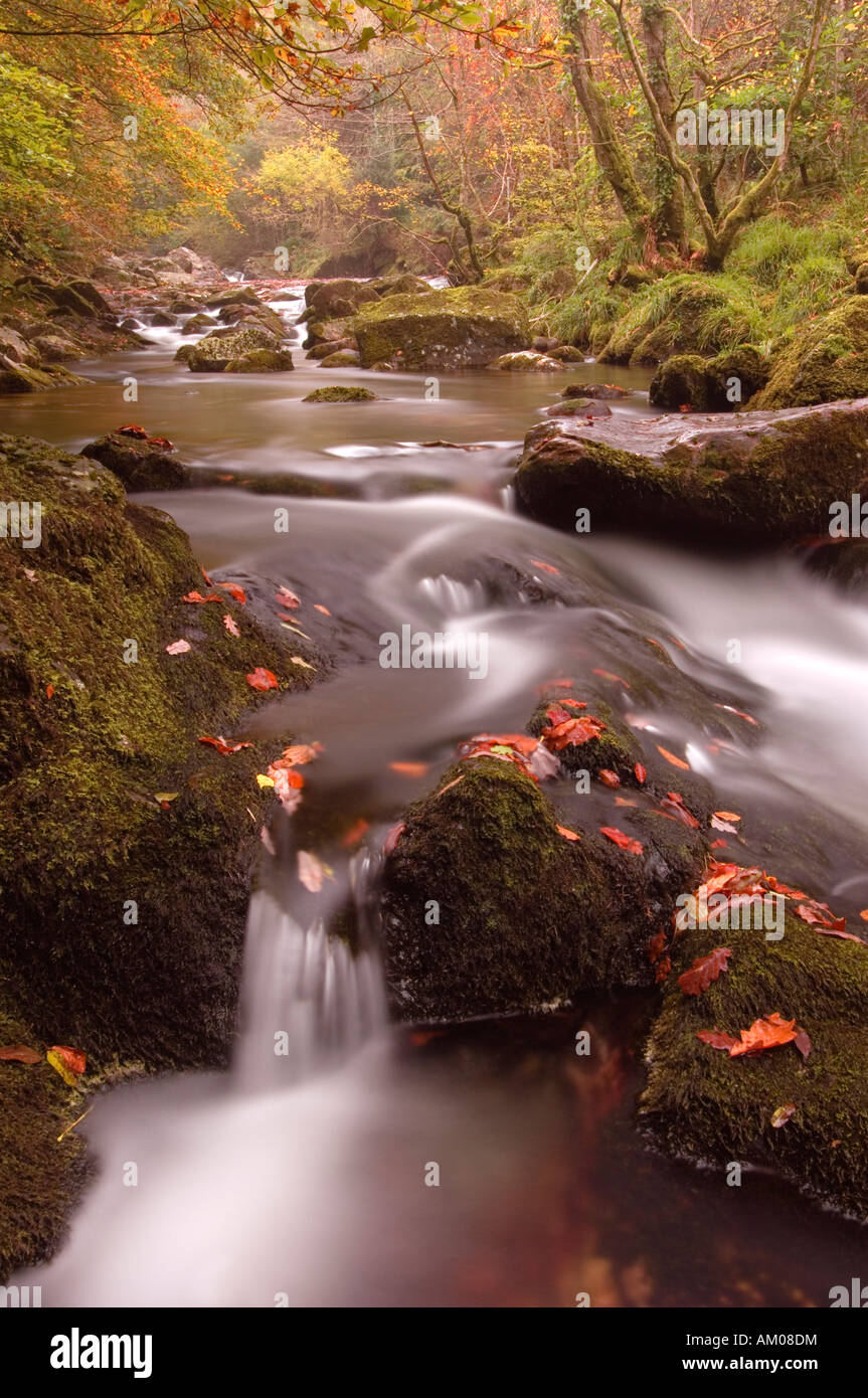 Flowing water over rocks in the River Erme in Autumn - Stock Image