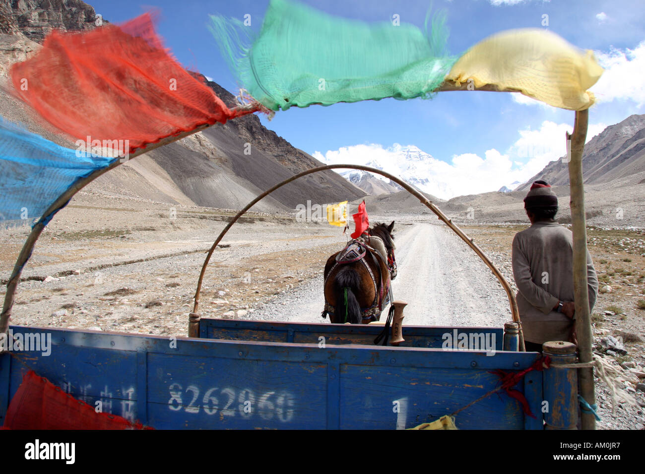 Horse and cart transport from Rongbuk Monastery to Everest Base Camp, Mt Qomolangma, The Himalayas, Tibet, China - Stock Image
