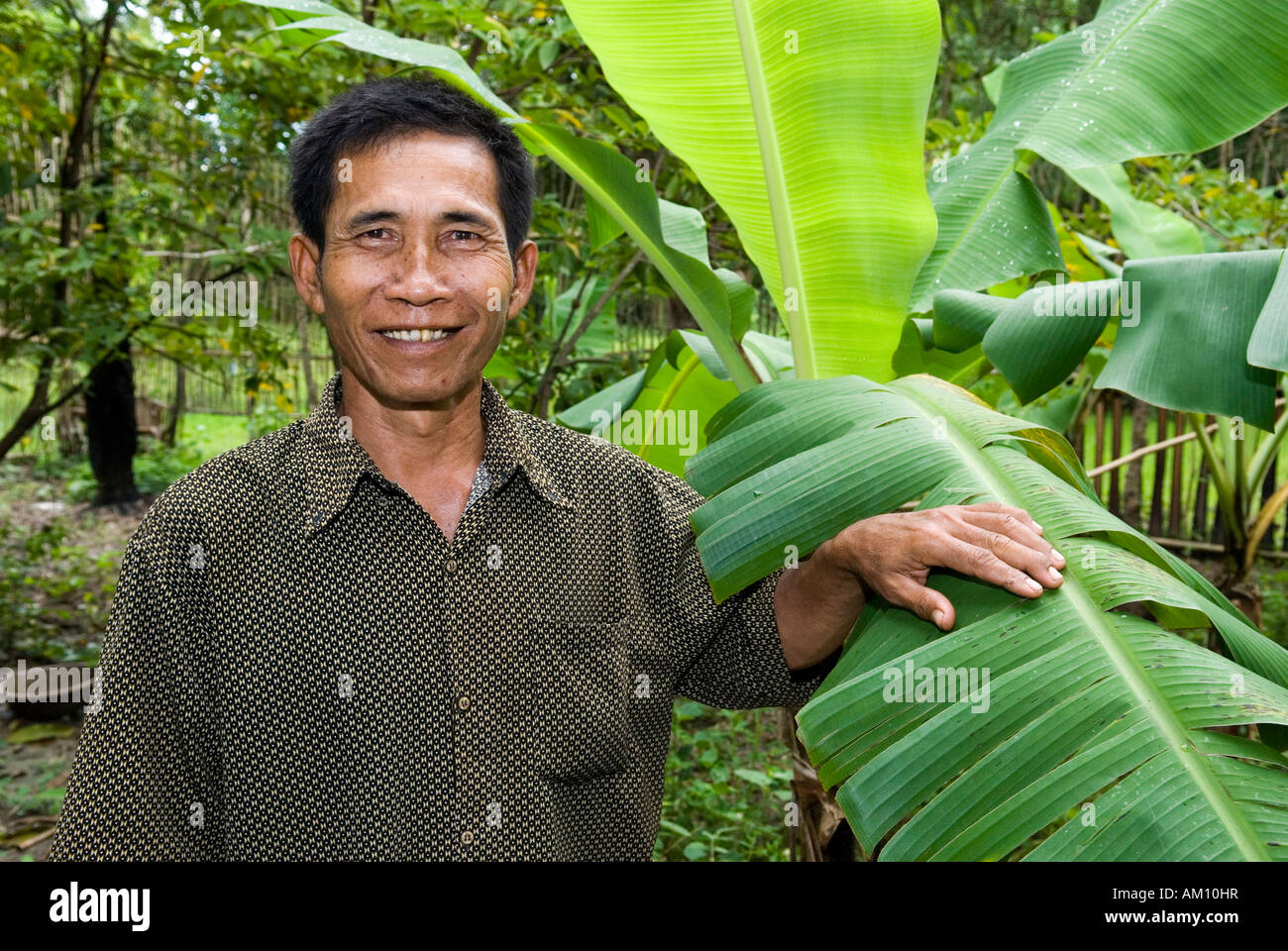 Farmer laughing besides a banana tree, Takeo Province, Cambodia - Stock Image