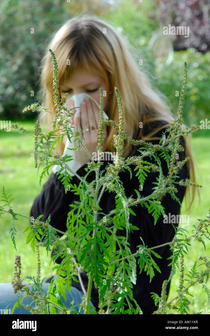Woman reacting allergic to Ragweed Stock Photo