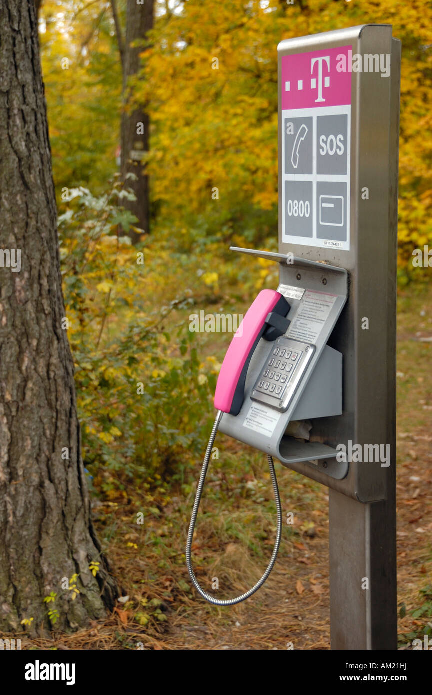 Public telephone on the edge of the forest, Stuttgart, Germany, Europe Stock Photo