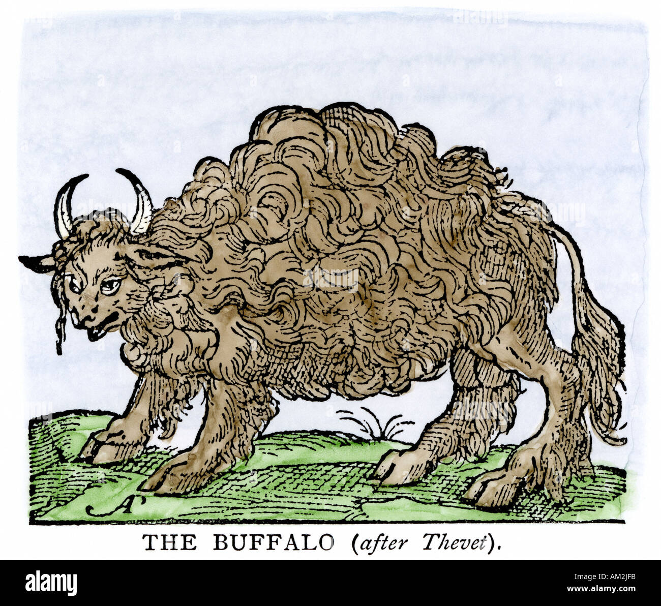 Possibly the earliest engraving of an American buffalo 1558 first mentioned by Alvar Nunez Cabeza de Vaca. Hand-colored woodcut - Stock Image