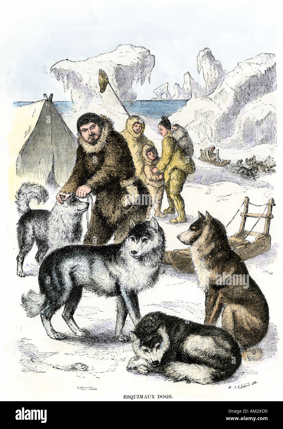 Inuit family with dog team and sled 1800s. Hand-colored woodcut - Stock Image