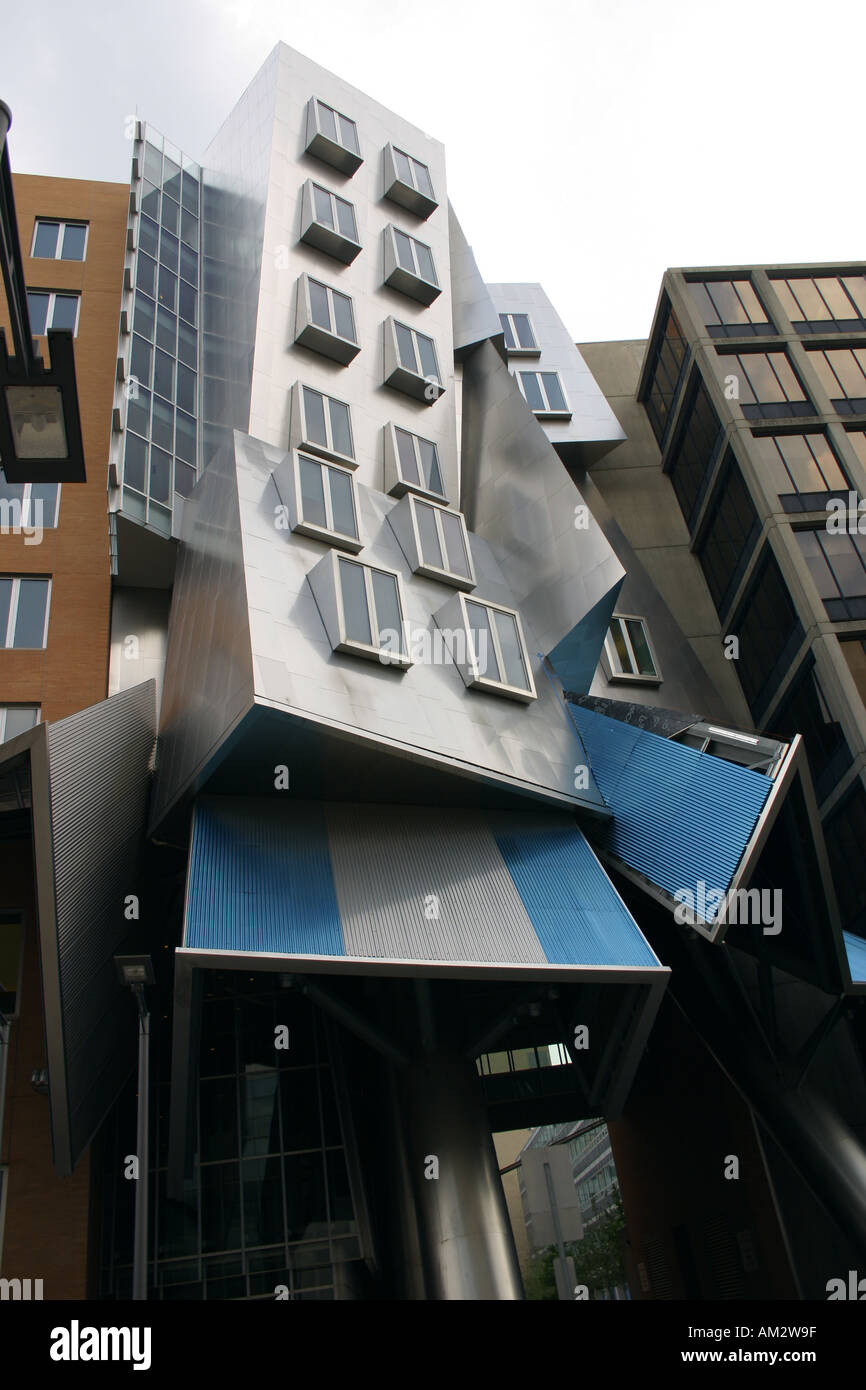 Stata Centre Modern Architecture Frank Gehry - Stock Image