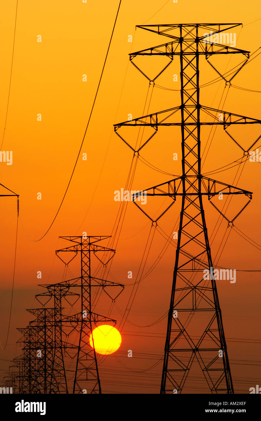 Power lines and setting sun - Stock Image