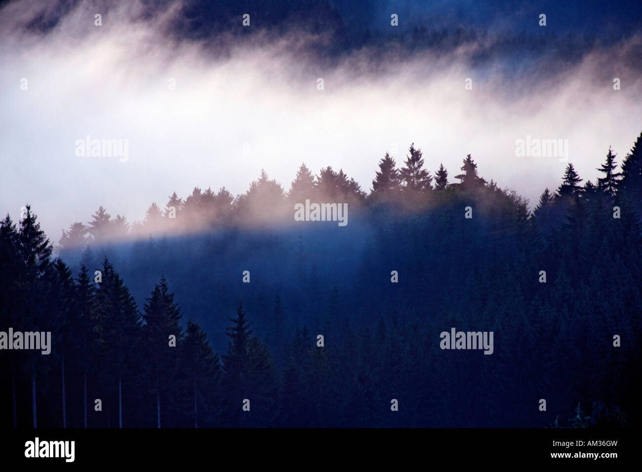 Fogbank over hilly landscape Stock Photo