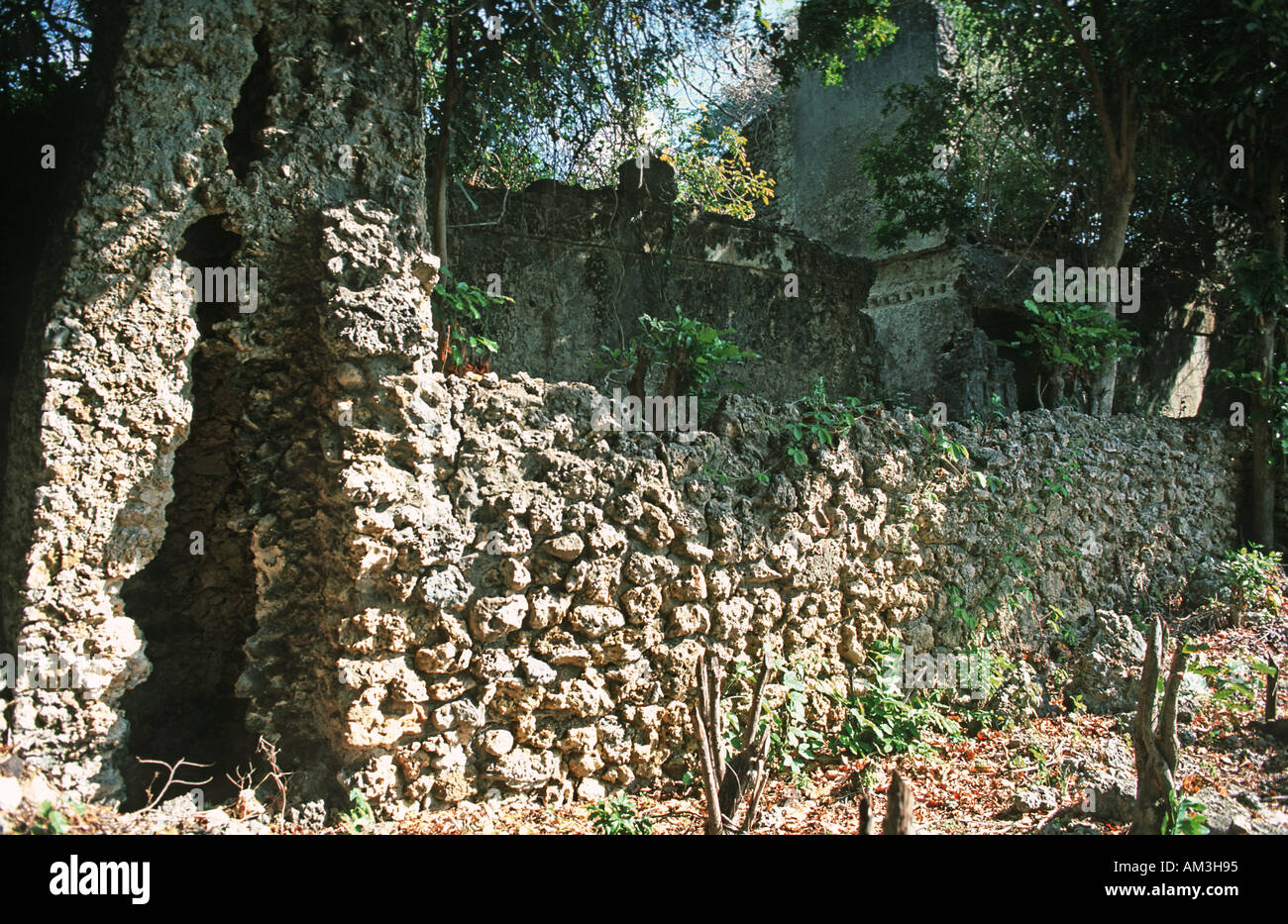 Abandoned overgrown and crumbling buildings form part of the ruins of Kua on Joani island Short sail from Mafia island Tanzania - Stock Image