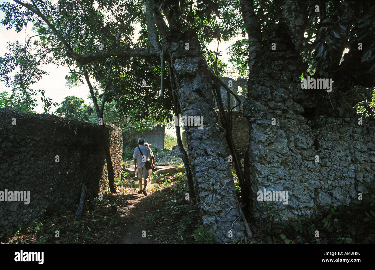 Abandoned overgrown and derelict buildings form part of the ruins of Kua on Joani island Walking in the ruins Mafia Tanzania - Stock Image