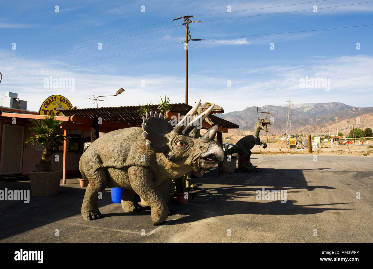 Crazy Coyote Taco stand Cabazon California United States of America - Stock Image