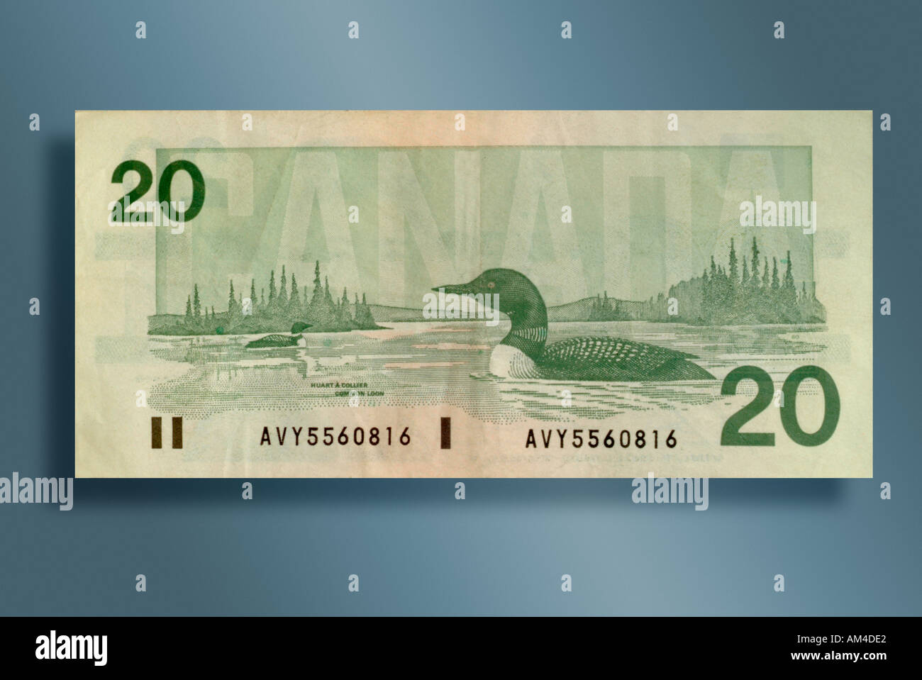 20 dollar bill from Canada - Stock Image