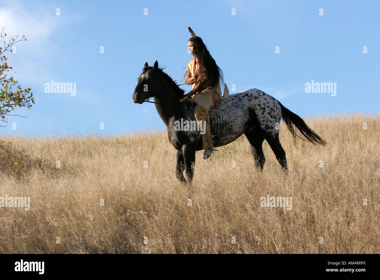A Native American Indian man on horseback scouting for enemies or hunting for food in the prairie of South Dakota - Stock Image