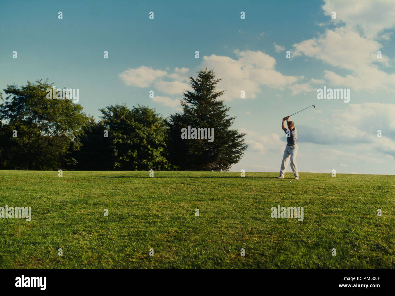 man drives a golf ball from a grassy fairway - Stock Image