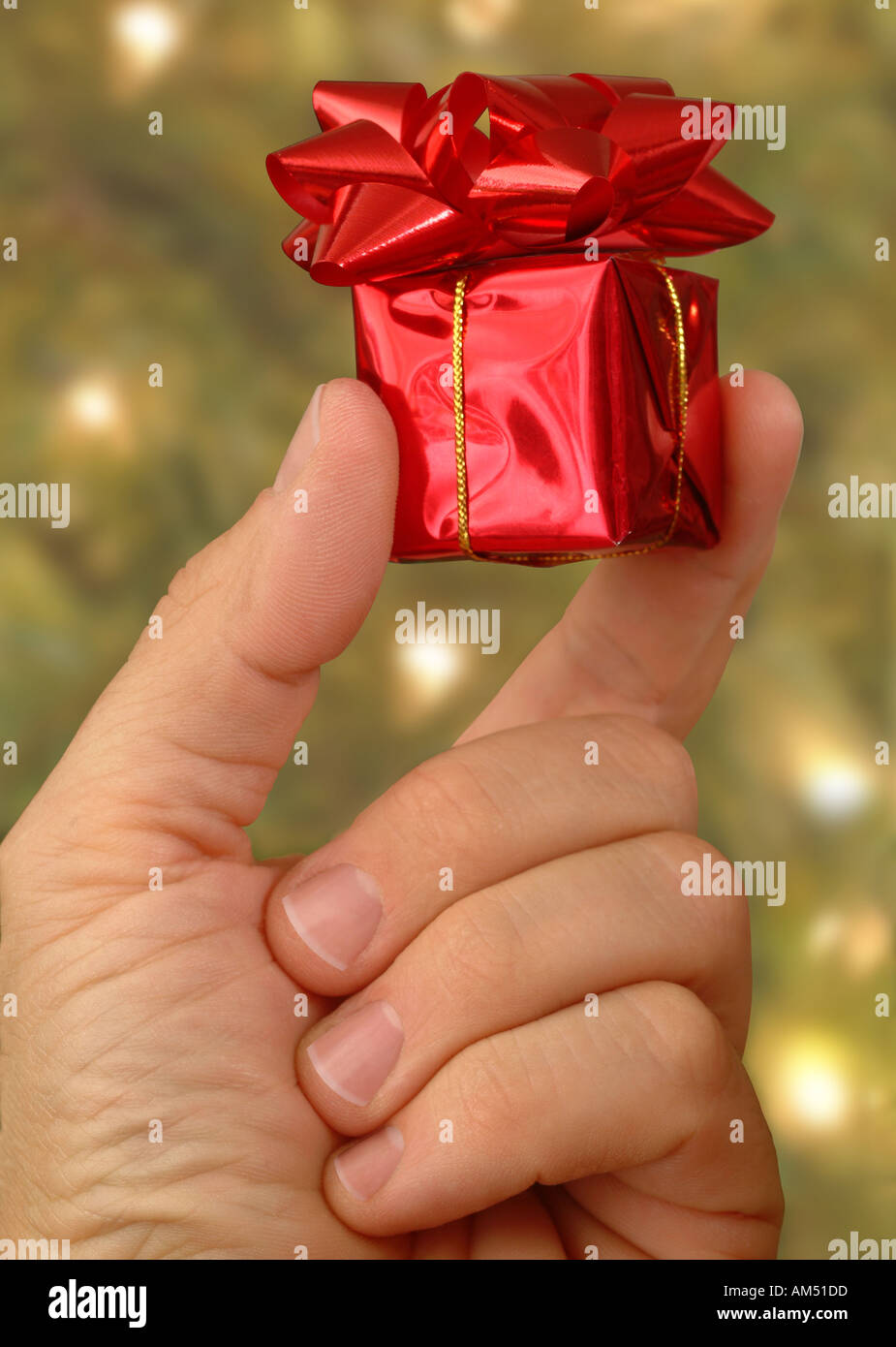 A very small Christmas gift held in a hand by a Christmas tree Stock ...