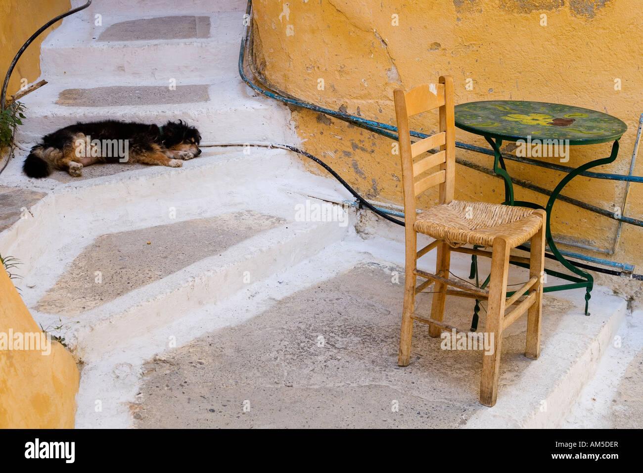 Dog asleep on a stairway, Greece, Europe - Stock Image