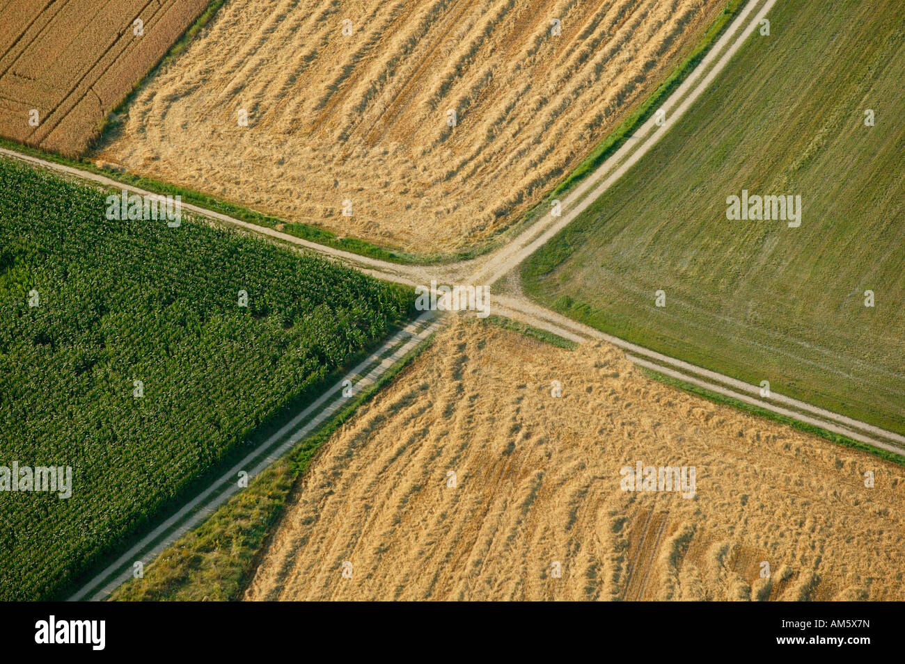 Agricultural paths dividing different fields, Bavaria, Germany Stock Photo