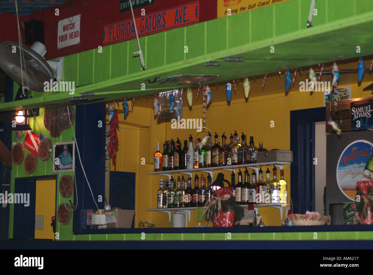 2755072ac10 Inside a colorful green bar in Crystal River harbour in Florida ...