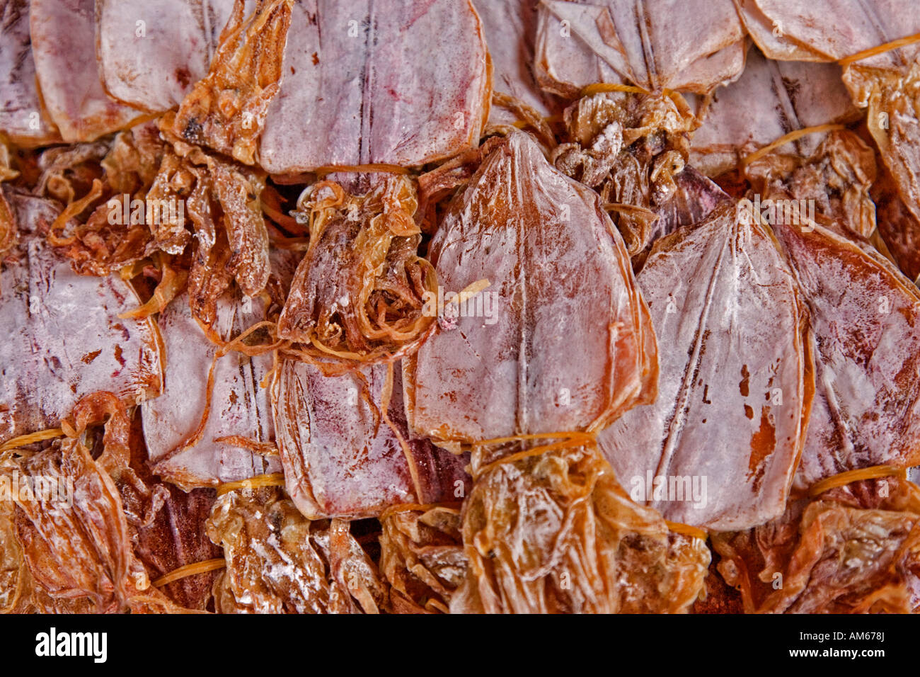 Dried Cuttlefish Stock Photos & Dried Cuttlefish Stock Images - Alamy