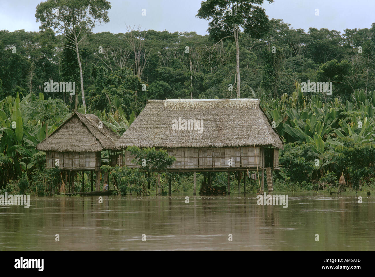 Settlers Hut Built On Stilts On Amazon River Bank Tributary In Peru