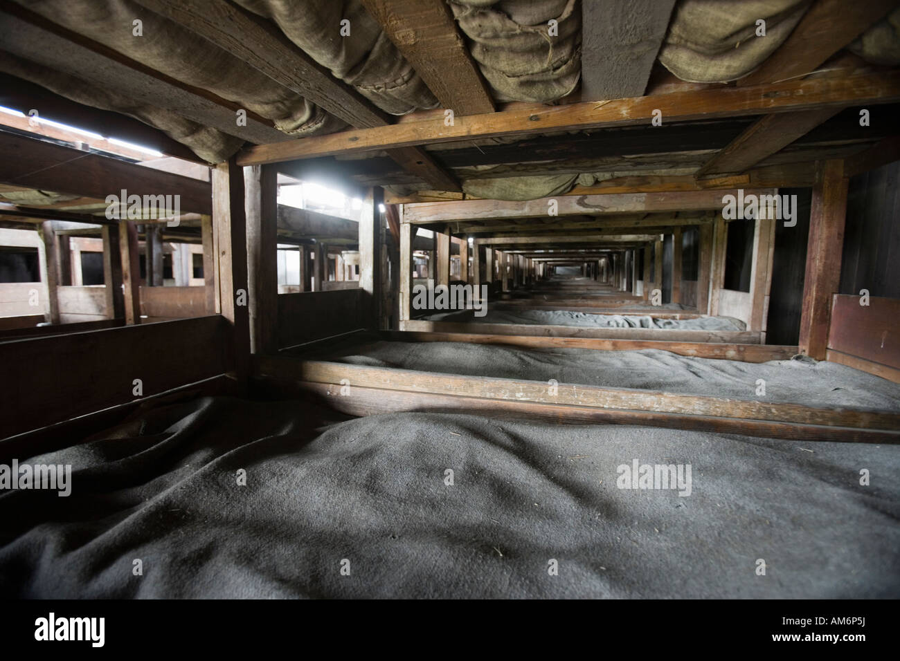 Majdanek Death Camp. 500-800 prisoners slept in barracks originally designed to house 52 horse stalls. - Stock Image