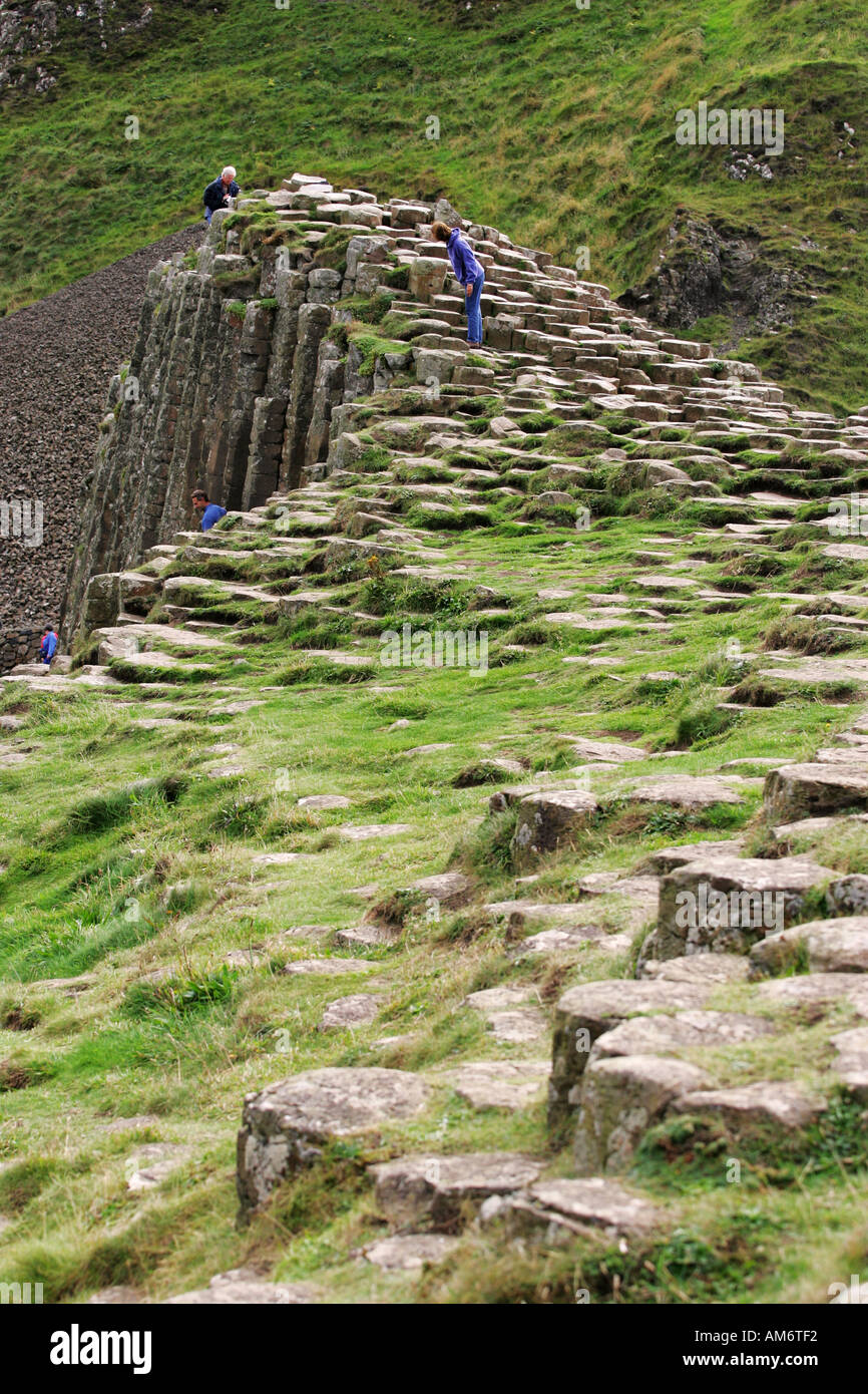 Tourists explore the lush green grass covered rocks of the world famous Giants Causeway tourist attraction, Northern Ireland GB - Stock Image