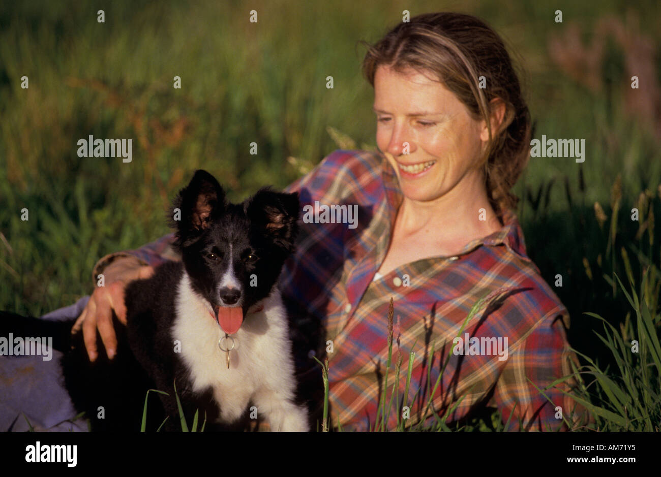 Woman Hugging Border Collie Stock Photos & Woman Hugging Border