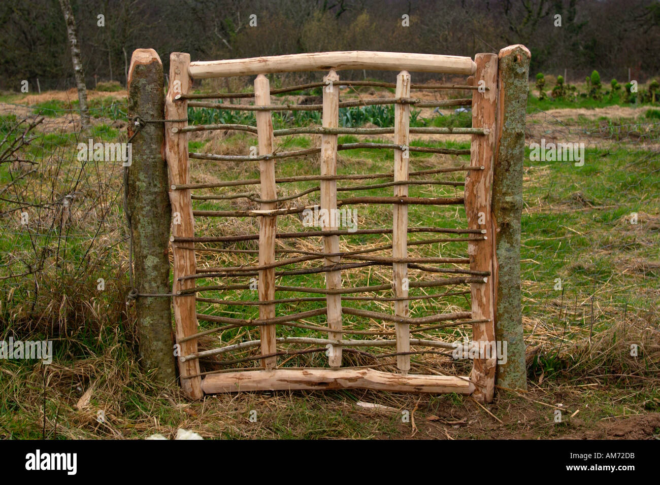 Rustic Hand Made Gate To Vegetable Garden In Eco Village Of Brithdir Mawr Near Newport Pembrokeshire