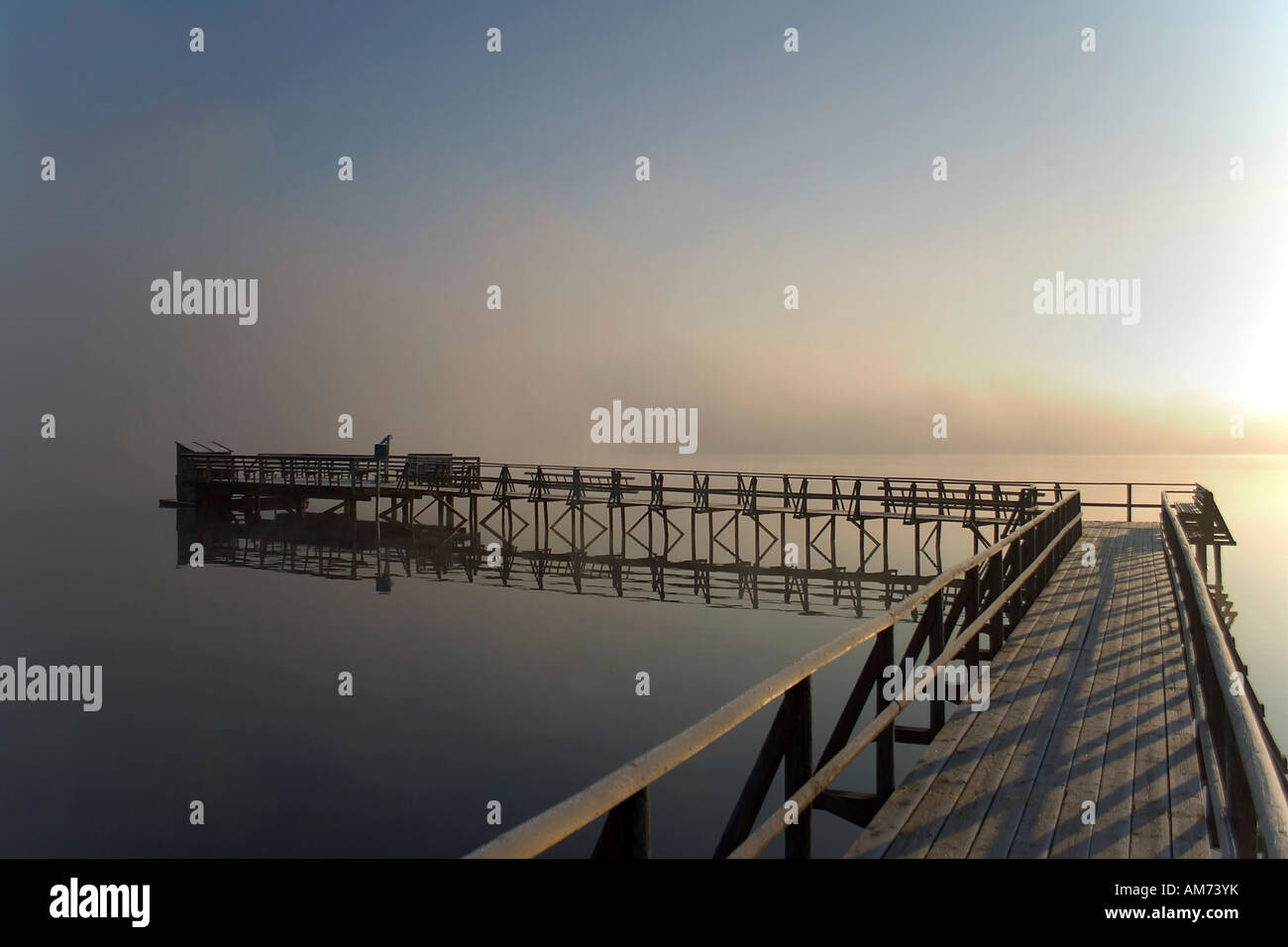 Lake Federsee in the morning light, Upper Swabia, Baden-Wuerttemberg, Germany Stock Photo