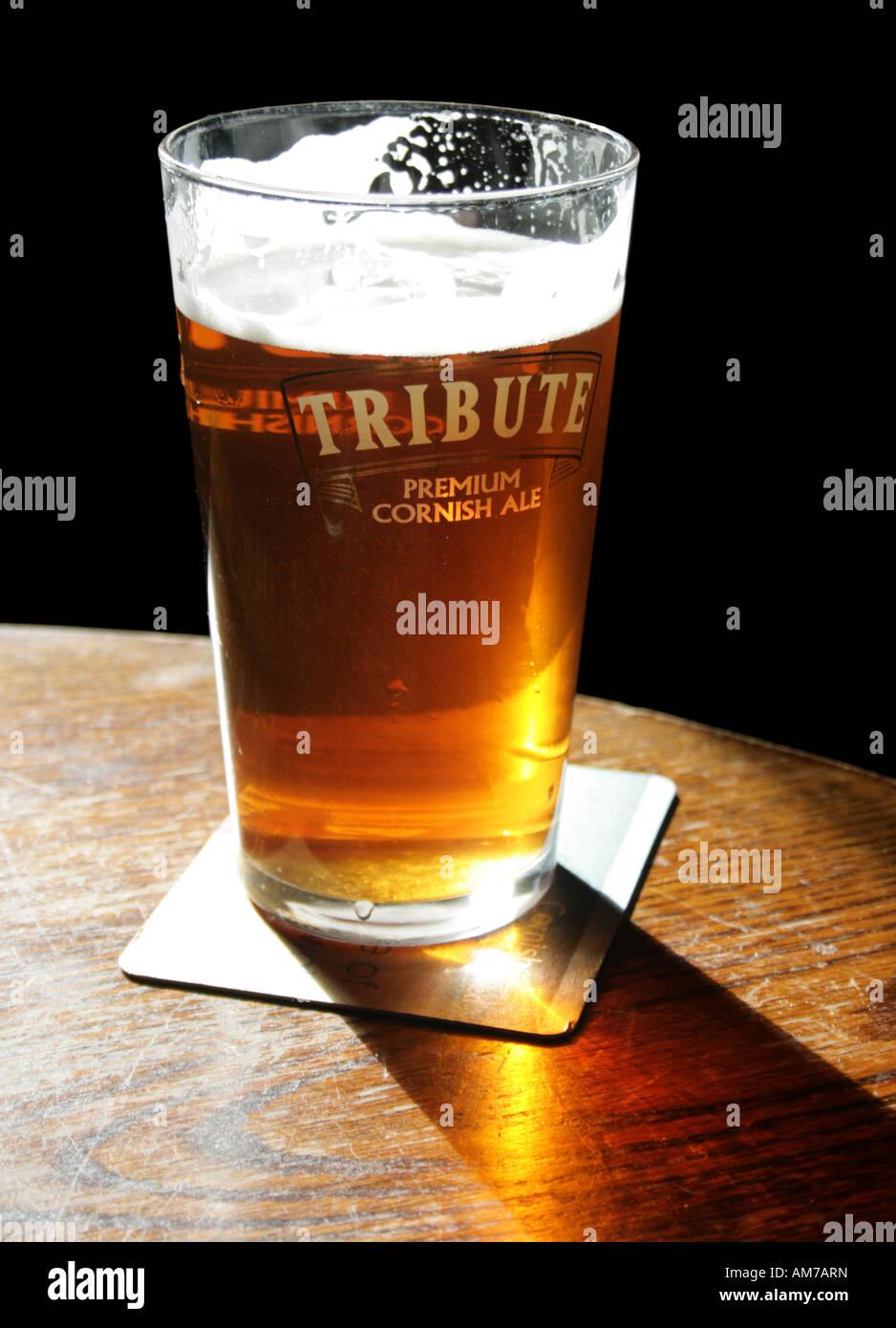 Pint in Pub, Cornwall, Great Britain - Stock Image