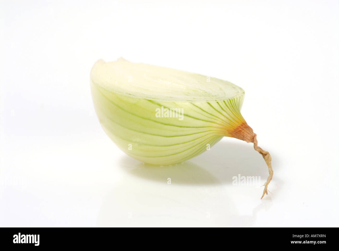 Cut through onion - Stock Image