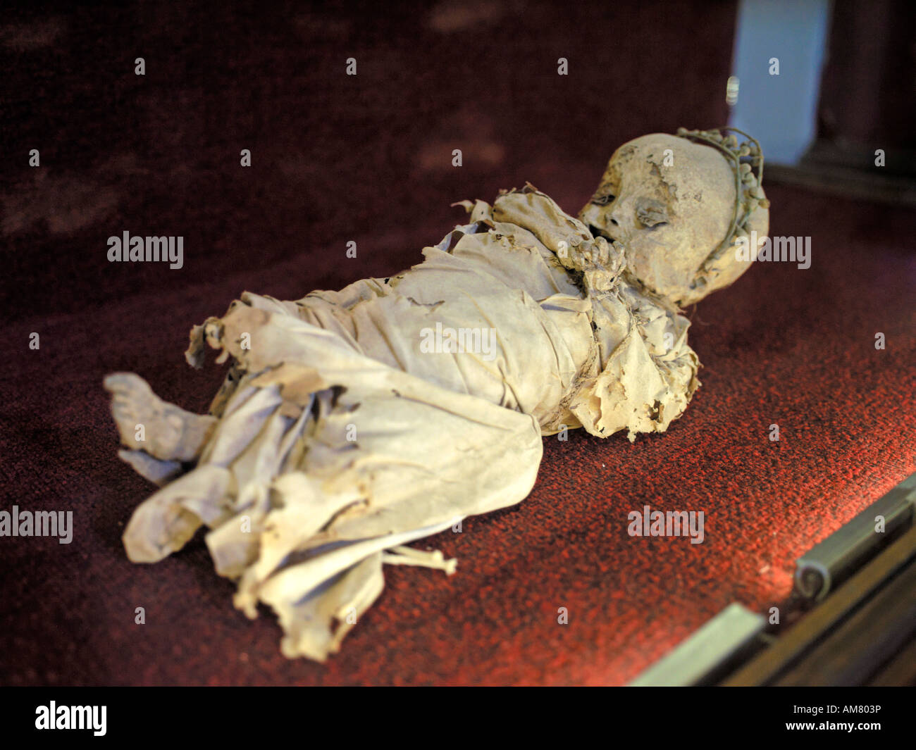 A cute mummified child lays asleep in the museum of mummies in Mexico. - Stock Image