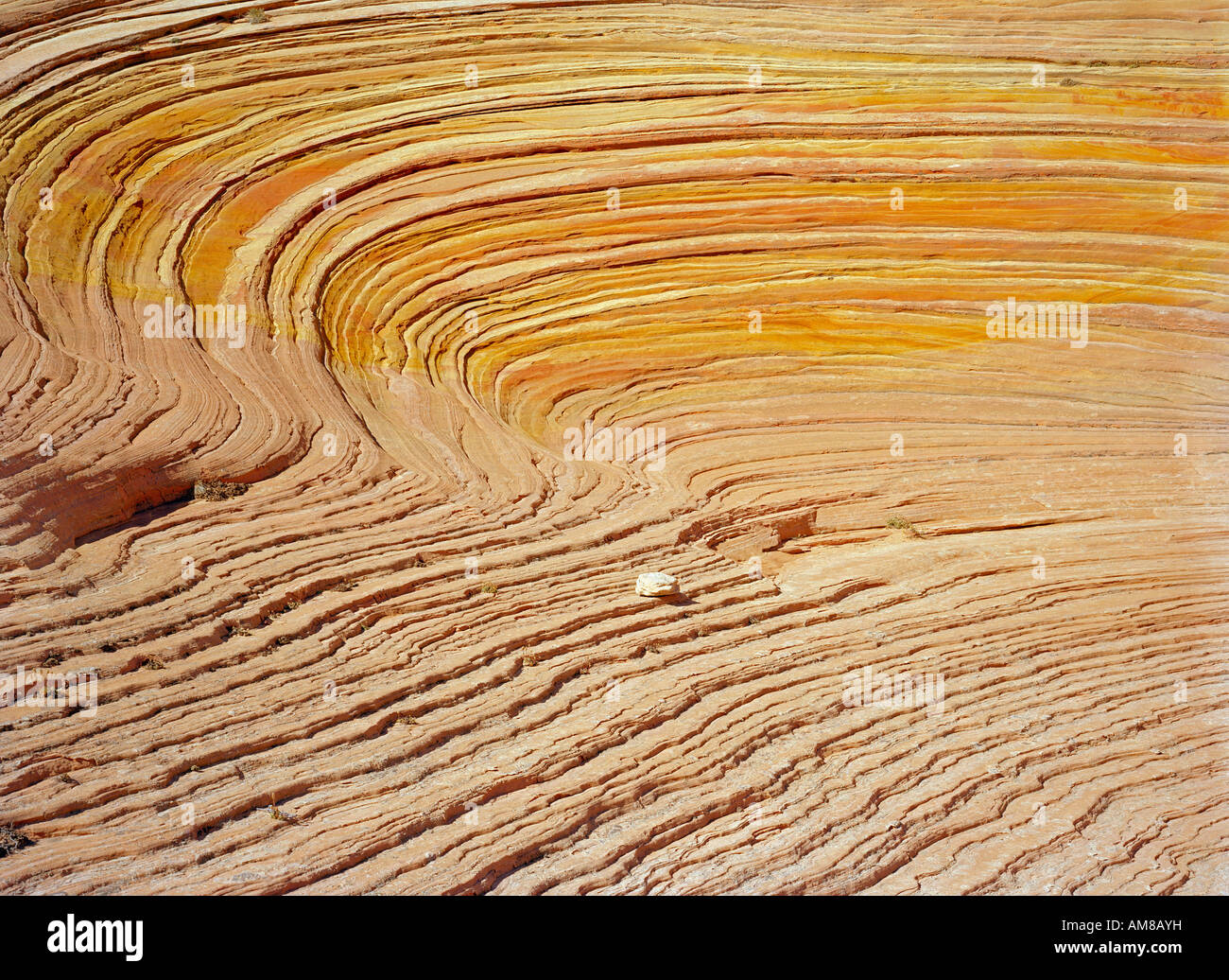 Coyote Buttes Grand Staircase Escalante National Monument curves Stock Photo