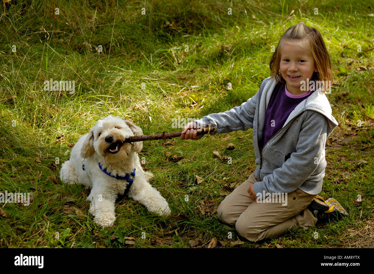 Young girl playing with pet dog outdoors. - Stock Image
