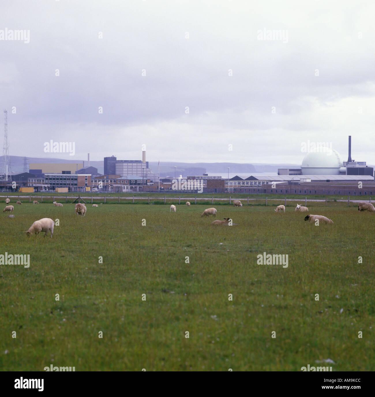 Dounreay Nuclear Power Station Highland Scotland - Stock Image