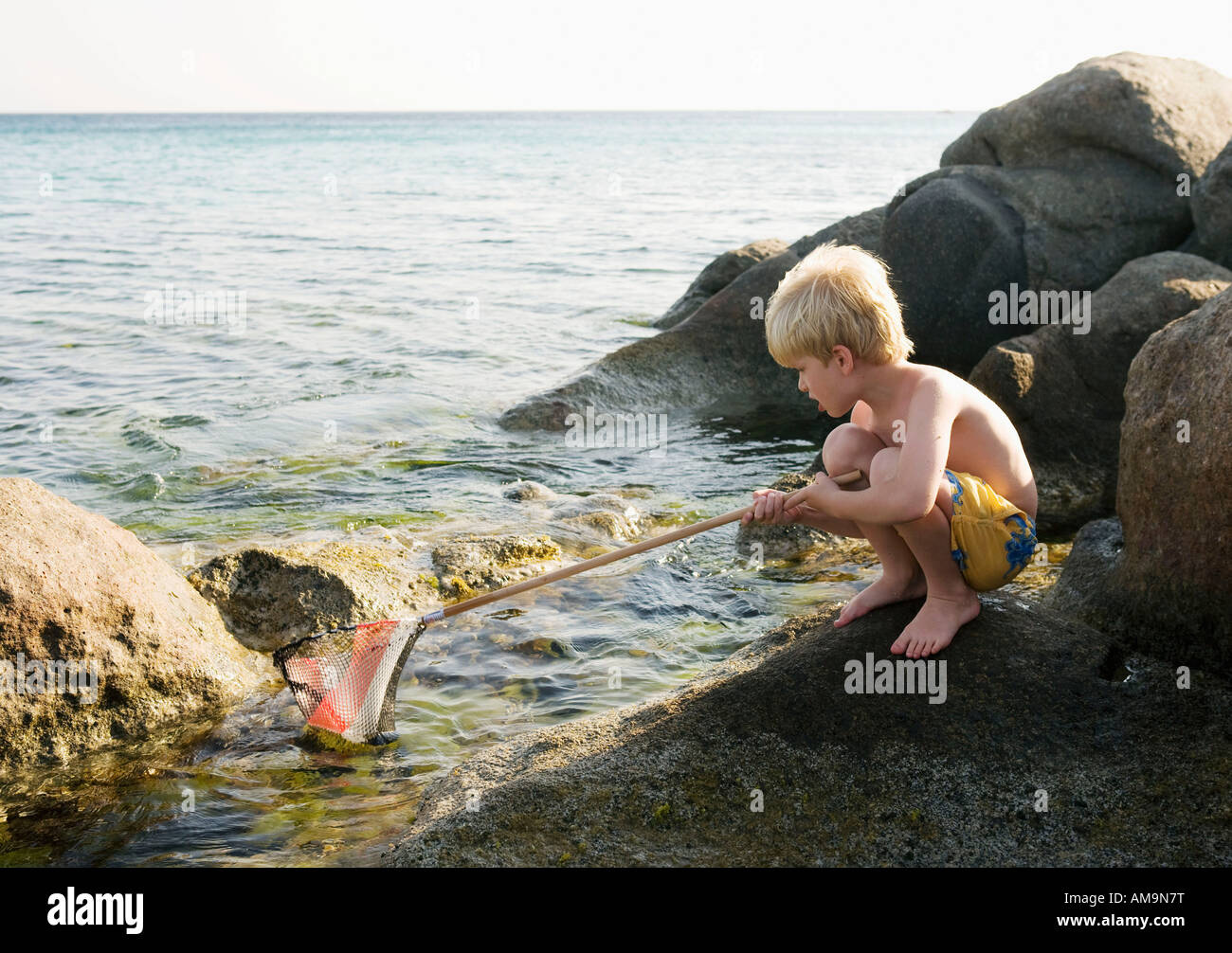 Young boy crouched on rocks fishing with a net. Stock Photo