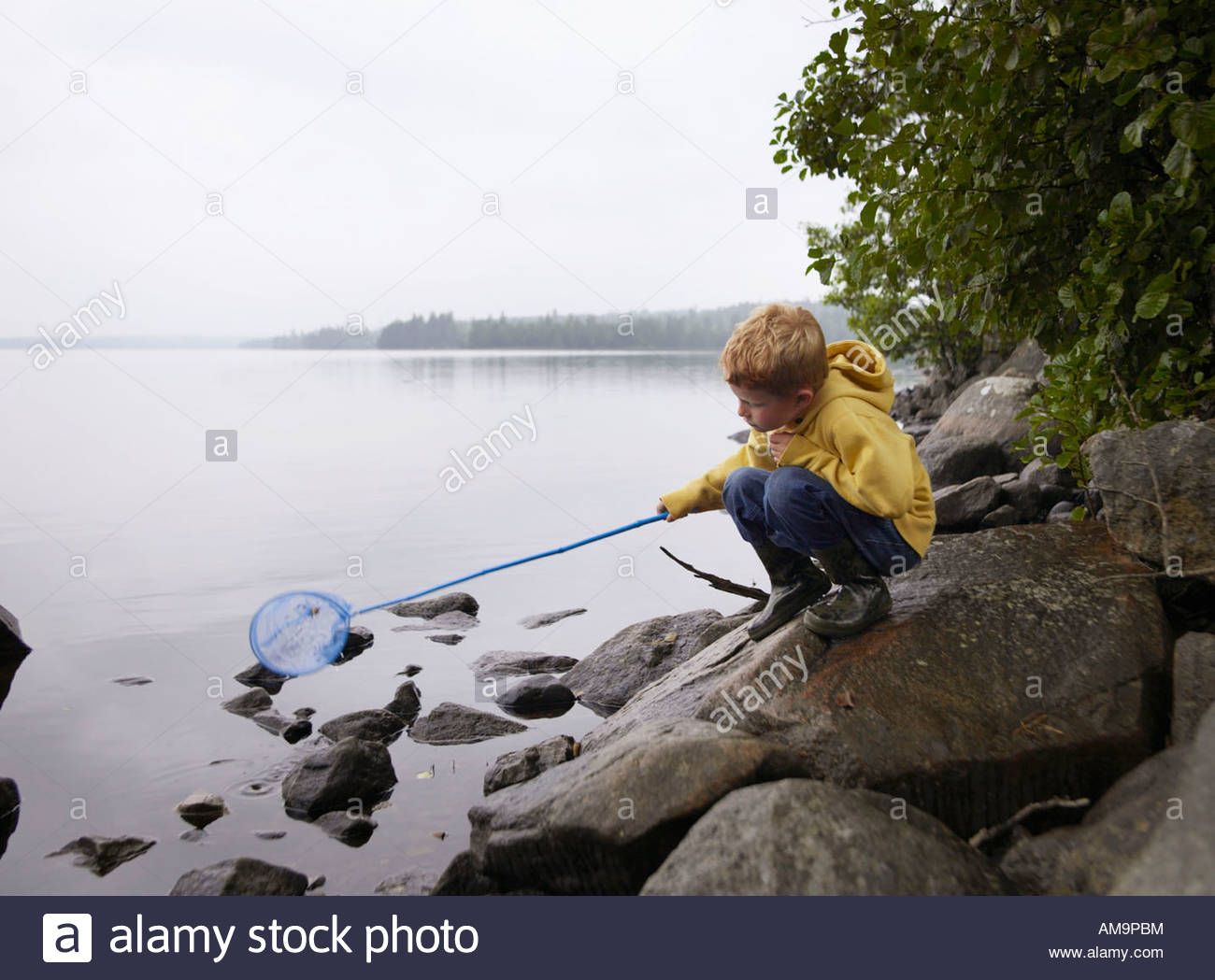 Young boy crouched on rocks fishing in a lake with a net. Stock Photo