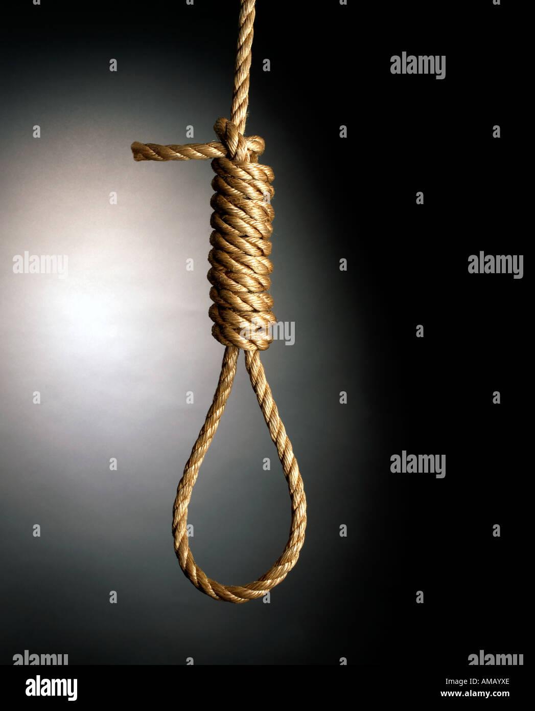 Rope Hang Man's Noose vertical - Stock Image