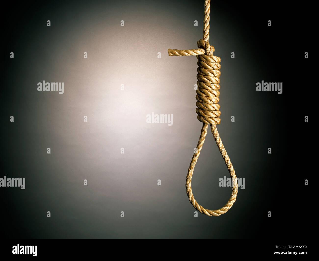 Rope Hang Man's Noose horizontal - Stock Image
