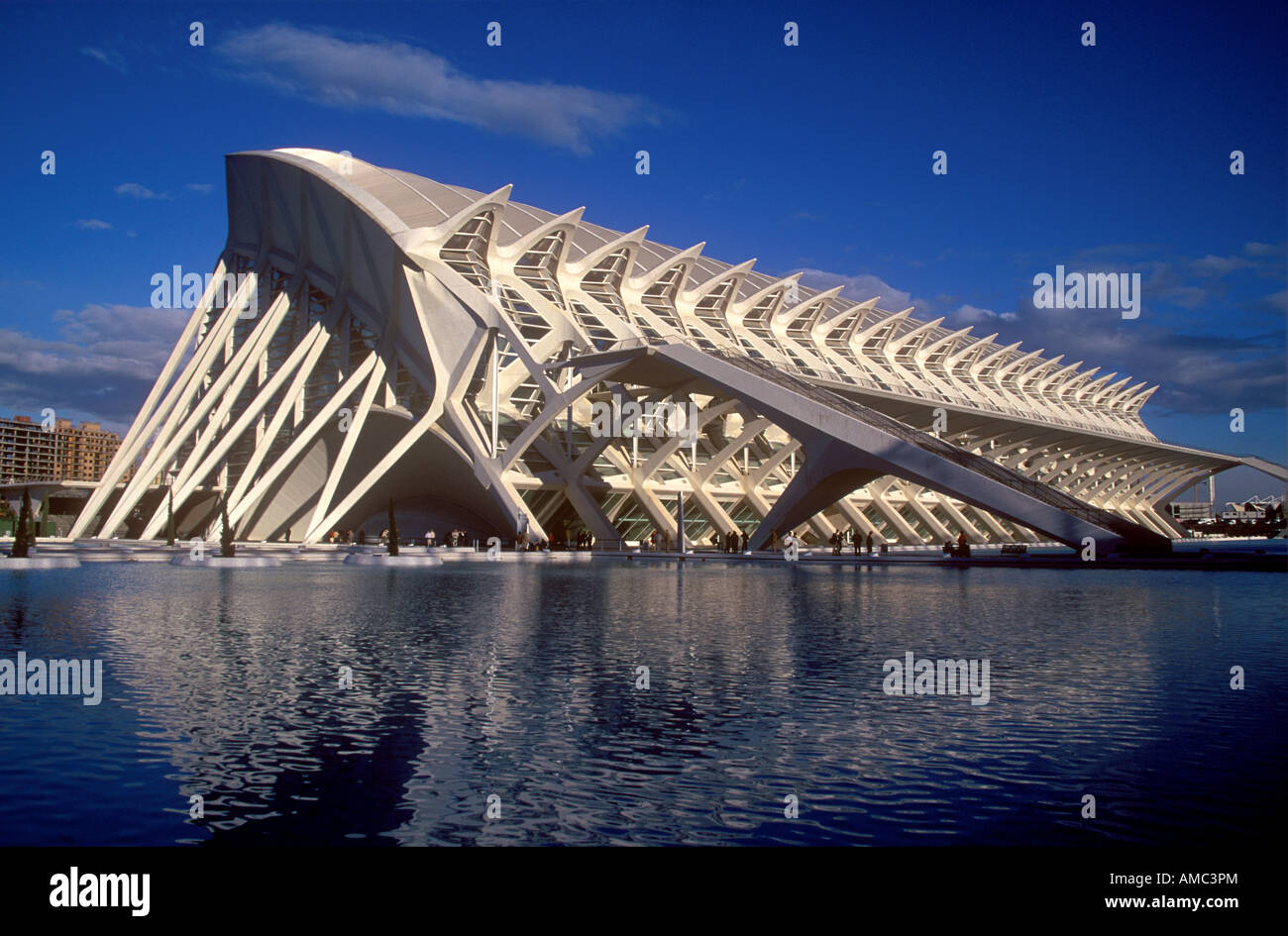 City of Arts and Sciences Museum of the 21st Century in the city of Valencia - Stock Image