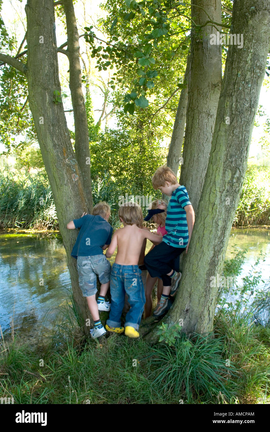 a group of children gather in between some tree trunks to look at passing river - Stock Image