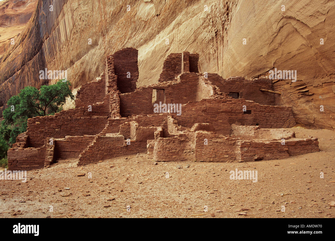 The White House Anasazi ruins Canyon de Chelly national park Arizona USA - Stock Image